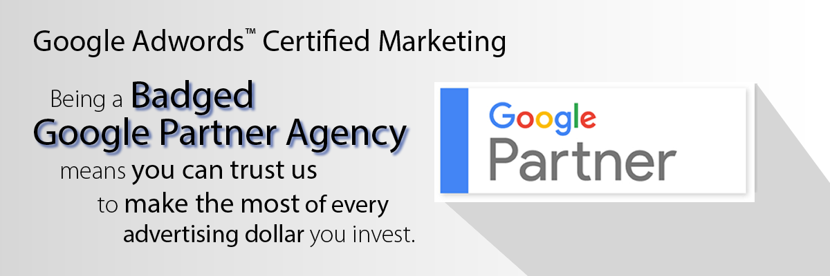 Gale Force Web Pros | A Badged Google Partner Agency