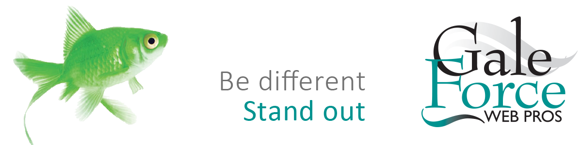 Gale Force Web Pros | Be Different - Stand Out