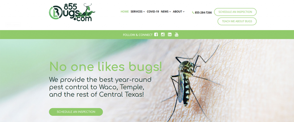 855Bugs.com | A Website by Gale Force Marketing, Inc.